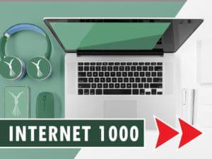 Flynet 1000Mbit