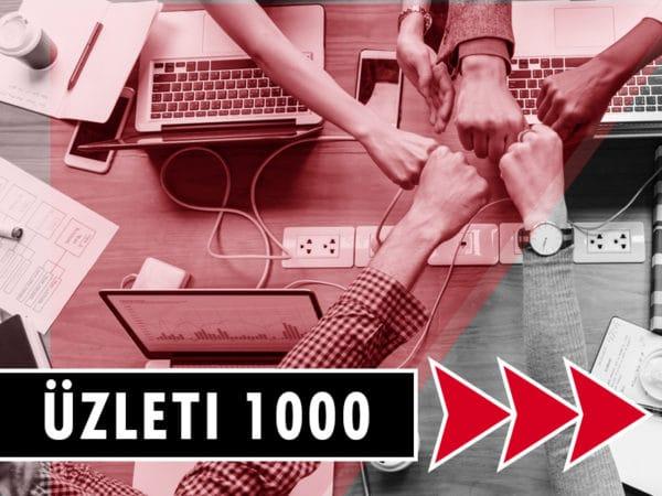 Flynet Üzleti 1000Mbit