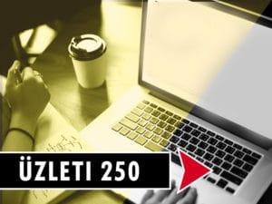 Flynet Üzleti 250Mbit
